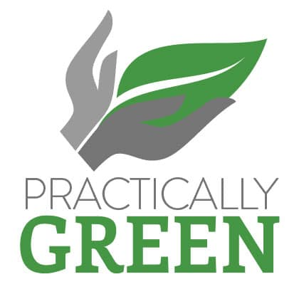 Practically Green Mattresses