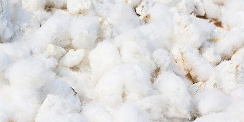 Nonwoven Cotton